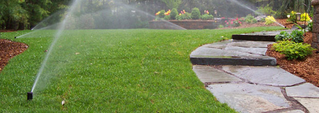 lawn irrigation benefits